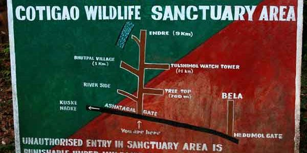 A Day Trip to Cotigao Wildlife Sanctuary